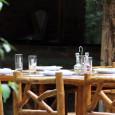 """Bojčinska šuma, sačuvano parče """"neobrađene"""" prirode je nadohvat centra Beograda, pogotovo ako živite sa leve strane Save. Samim tim što se prostire u ravnom Sremu i prilaz čini ravno trasiran […]"""